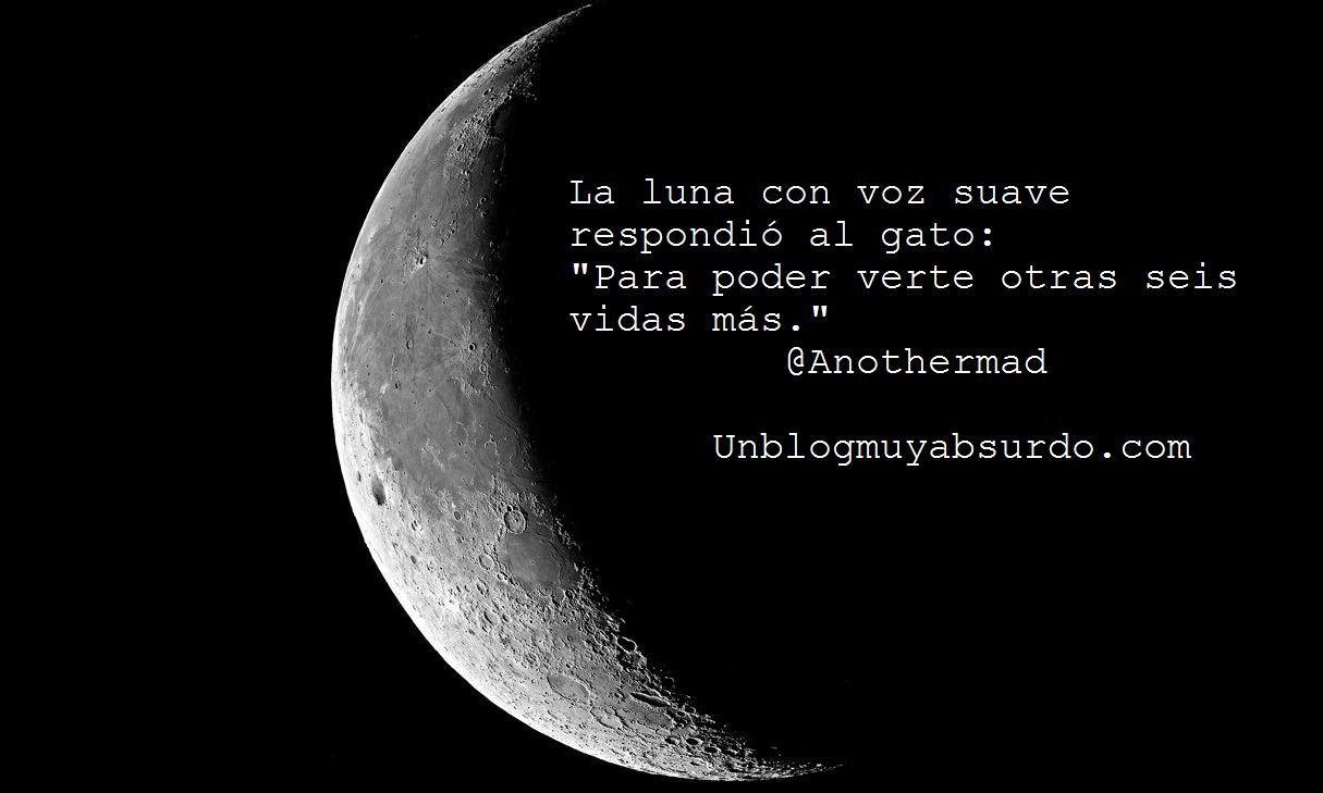 La luna respondió